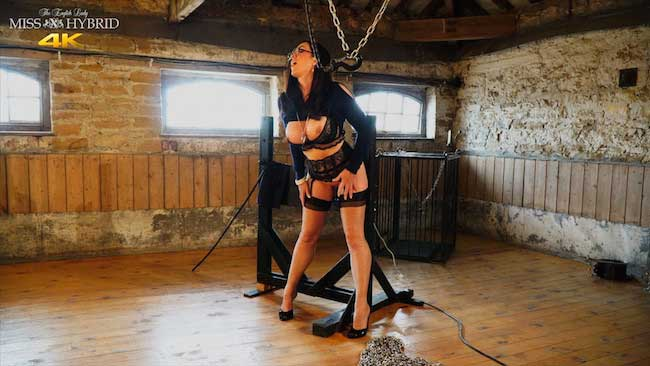 Miss Hybrid mistress summons you to the dungeon to try her new stocks.